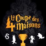 stage-coupe-des-4-maisons-MJC-Blagnac